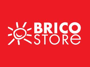 Bricostore Logo